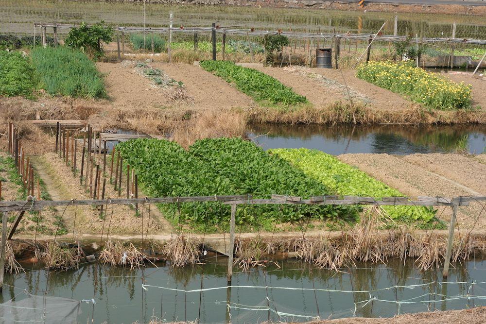 龍崎掩埋場投資三千萬,協助龍崎地區進行水土保持防災